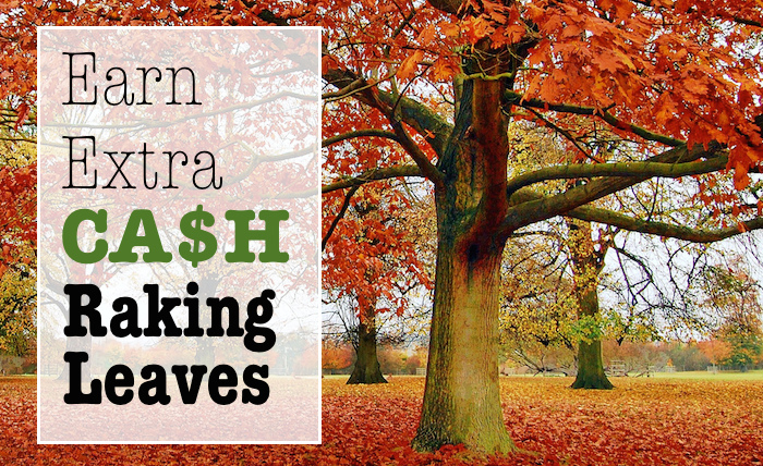 Earn Extra Cash Raking Leaves