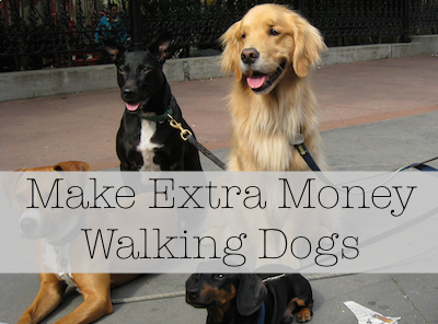 How Much Extra Cash Would A Dog Walker Make